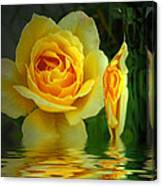 Sunny Delight And Vase 2 Canvas Print