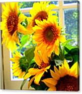 Sunny In Md 1 Canvas Print