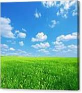 Sunny Spring Landscape Canvas Print
