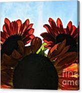 Sunny Trio Canvas Print