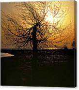 Sunrise And Tree Canvas Print