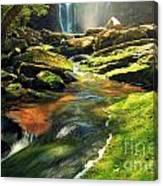 Sunrise At Elakala Falls Canvas Print