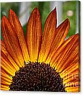 Sunrise Floral Canvas Print