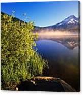 Sunrise Fog On Trillium Lake Canvas Print