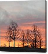 Sunrise On The Hill Canvas Print