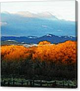 Sunrise On Trees Canvas Print