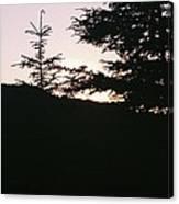 Sunrise Over Mt Still Canvas Print