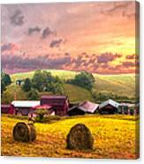 Sunrise Pastures Canvas Print