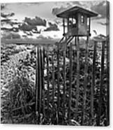 Sunrise Sentinel In Black And White Canvas Print