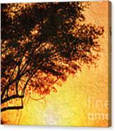 Sunrise Silhouette Canvas Print