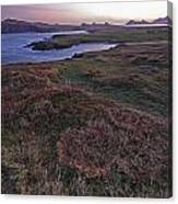 Sunrise View Of Clogher Beach Canvas Print