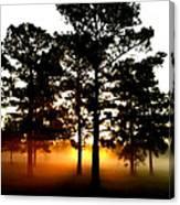 Sunrise3 Canvas Print