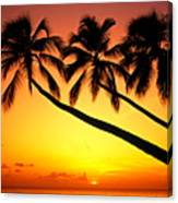 Sunset At Tropical Beach, Barbados Canvas Print