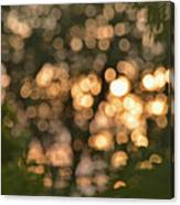 Sunset Bokeh  Canvas Print