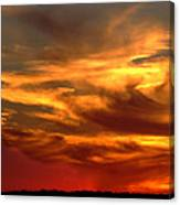 Sunset Bull  Canvas Print