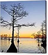 Sunset On Lake Mattamuskeet Canvas Print