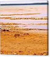 Sunset On The Mud Flats Canvas Print