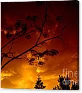 Sunset Over Florida Canvas Print