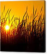 Sunset Over The Prairie Canvas Print