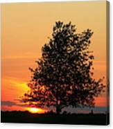 Square Photograph Of A Fiery Orange Sunset And Tree Silhouette Canvas Print