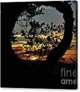 Sunset Through A Heart Of Branches Canvas Print