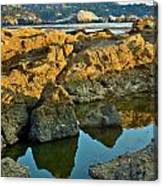 Sunset Tidepool Larry Darnell Point Lobos Central California Landscape Canvas Print