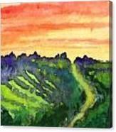 Sunset Vineyard Canvas Print