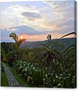 Sunsetting Over Costa Rica Canvas Print
