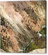 Sunshine On Grand Canyon In Yellowstone Canvas Print