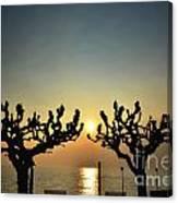 Sunshine Over A Lake Canvas Print