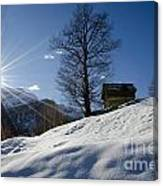 Sunshine Over The Snow Canvas Print