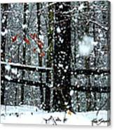 Supersized Snowflakes Canvas Print