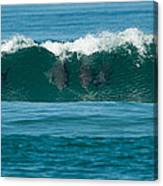 Surfing Dolphins 2 Canvas Print