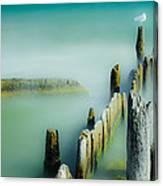 Surreal Sea Gull Canvas Print