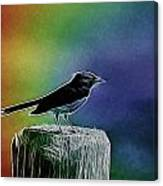 Surrounded By Color Canvas Print