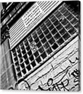 Surveilance Canvas Print