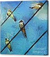 Swallows Goes To South Canvas Print