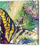Swallowtail 1 Canvas Print