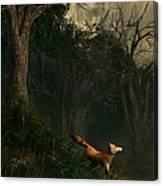 Swamp Fox Canvas Print