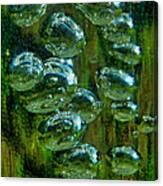 Swamp Gas Canvas Print