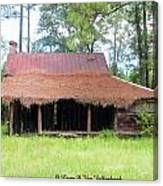 Swamp House Or Cracker Cabin Canvas Print