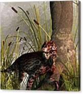 Swamp Lycaenops Canvas Print