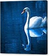 Swan On Lake Canvas Print