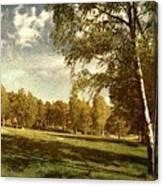 Swedish Landscape Canvas Print