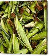 Sweet Corn Canvas Print