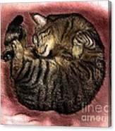 Sweet Dreams 2 Canvas Print