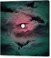 Swim To The Moon Canvas Print