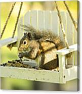 Swingin Squirrel Robber Canvas Print