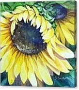 Swingin' Sunflowers Canvas Print