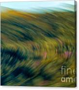 Swirling Field Canvas Print